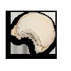 macaron-1